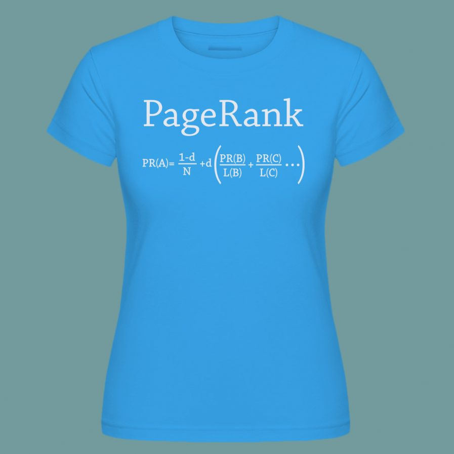 pagerank sky blue seo t-shirt for ladies