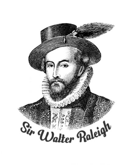 Sir Walter Raleigh T-Shirt Design Closeup